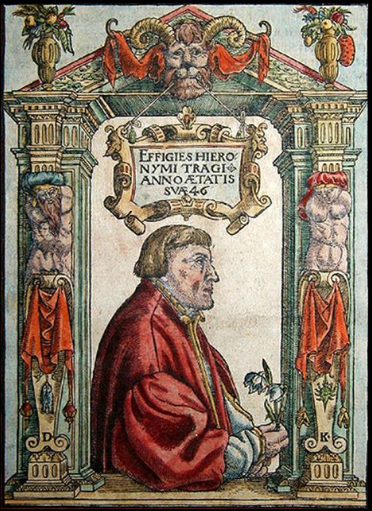 Hieronymus Bock httpsuploadwikimediaorgwikipediacommons66