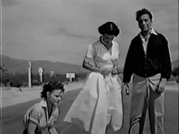 Highway Dragnet Highway Dragnet Martin Tellers Movie Reviews
