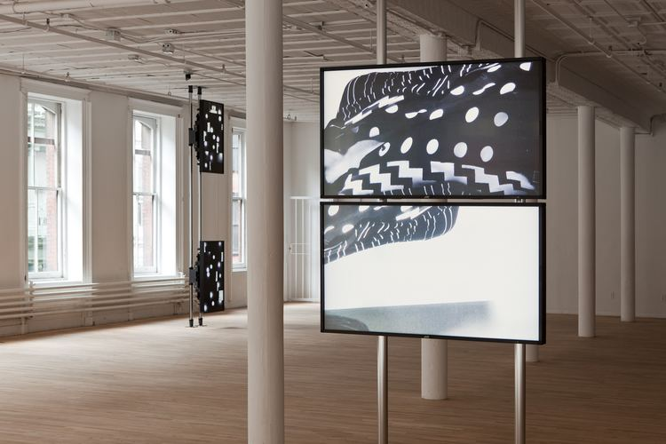 Hilary Lloyd Hilary Lloyd at Artists Space Contemporary Art Daily