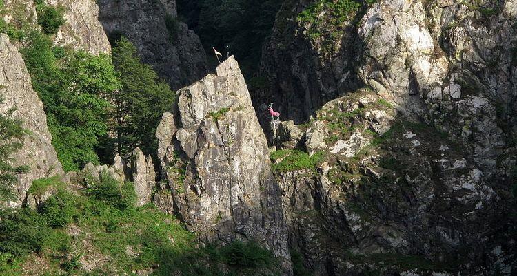 Hirschsprung (Black Forest)