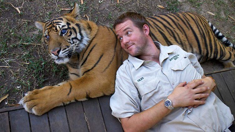 His Buddy BBC Two Giles with his buddy Spot Tigers about the House What