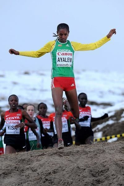 Hiwot Ayalew Athlete profile for Hiwot Ayalew iaaforg
