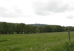 Höllberg (Westerwald) httpsuploadwikimediaorgwikipediacommonsthu