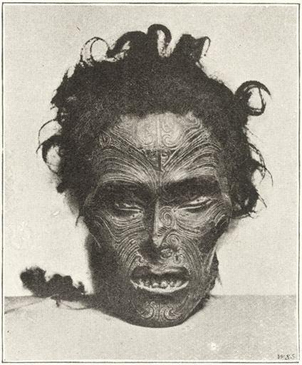Horatio Gordon Robley ROBLEY Horatio Gordon 18401930 Moko or Maori