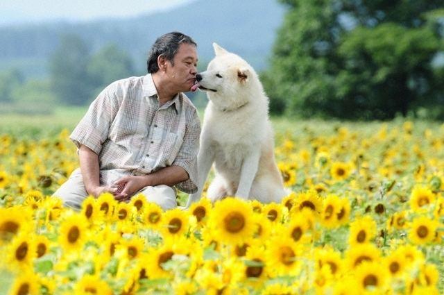 Hoshi Mamoru Inu Star Watching Dog AsianWiki