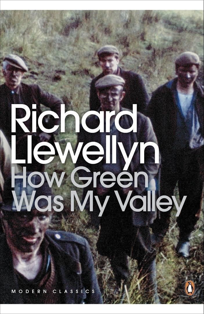 How Green Was My Valley t0gstaticcomimagesqtbnANd9GcT7Fq5wkxvad2wBN