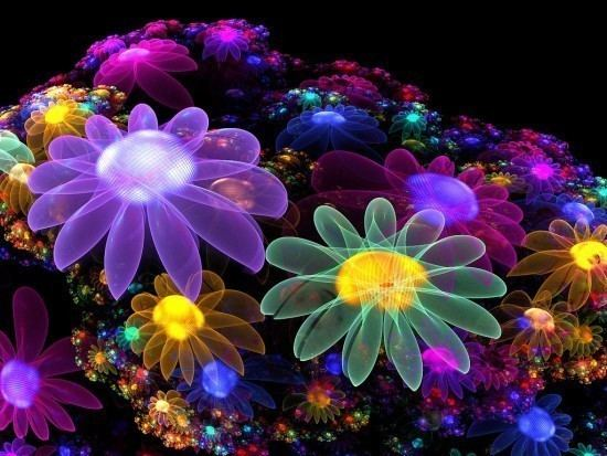 http://images4.fanpop.com/image/photos/17200000/Colourful-Flowers-bright-colors-17227068-550-413.jpg