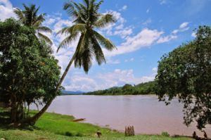 Huallaga River httpsuploadwikimediaorgwikipediacommonsthu