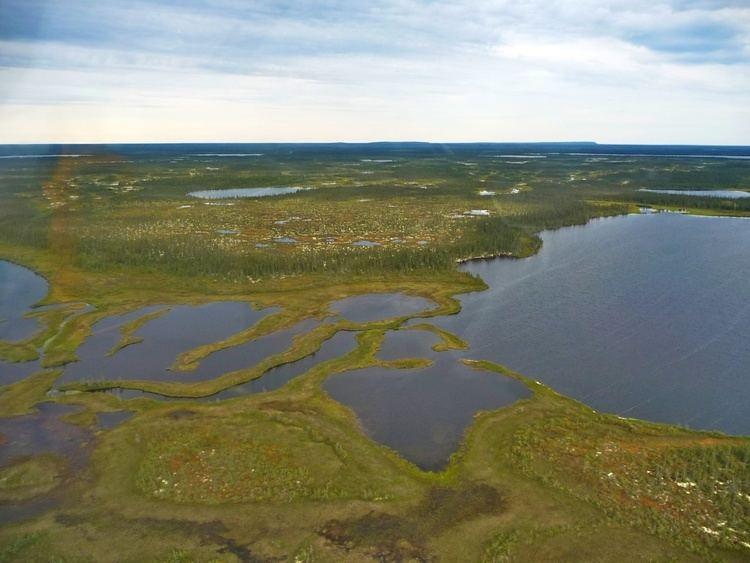 Hudson Bay Lowlands Hudson Bay Lowlands photos