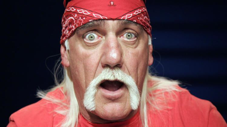 Hulk Hogan UPDATE Transcript of Hulk Hogan Racist Rant Released