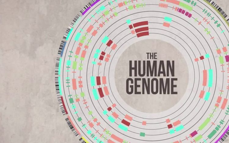 Human Genome Project Human Genome Project Pros and Cons List NYLNorg