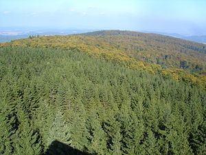 Hunsrück (Kellerwald) httpsuploadwikimediaorgwikipediacommonsthu