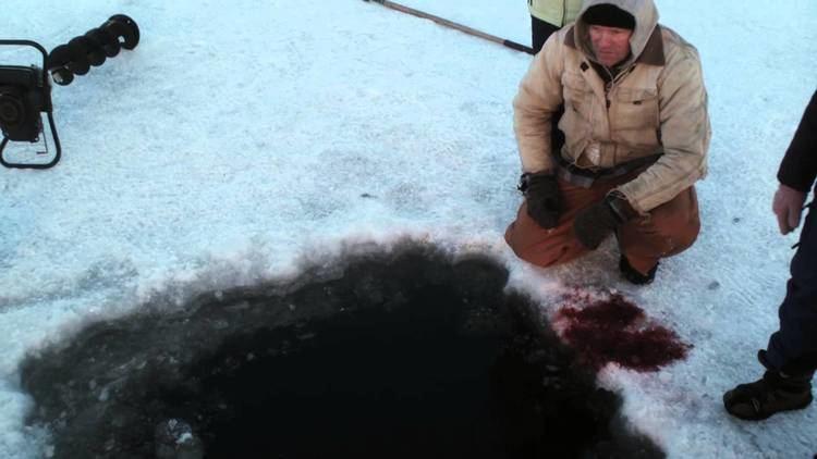Hypothermia (film) Hypothermia Trailer YouTube