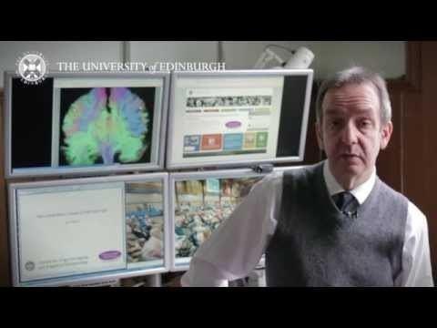 Ian Deary Professor Ian Deary Research in a Nutshell YouTube