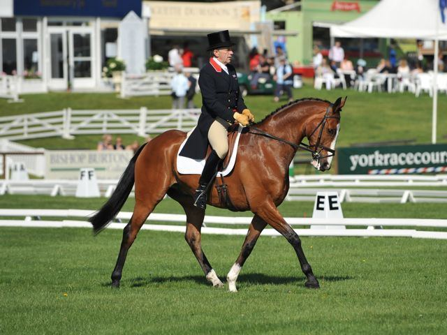 Ian Stark Ian Stark on horses courses sleepless nights and a busy life