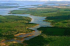 Iberá Provincial Reserve httpsuploadwikimediaorgwikipediacommonsthu