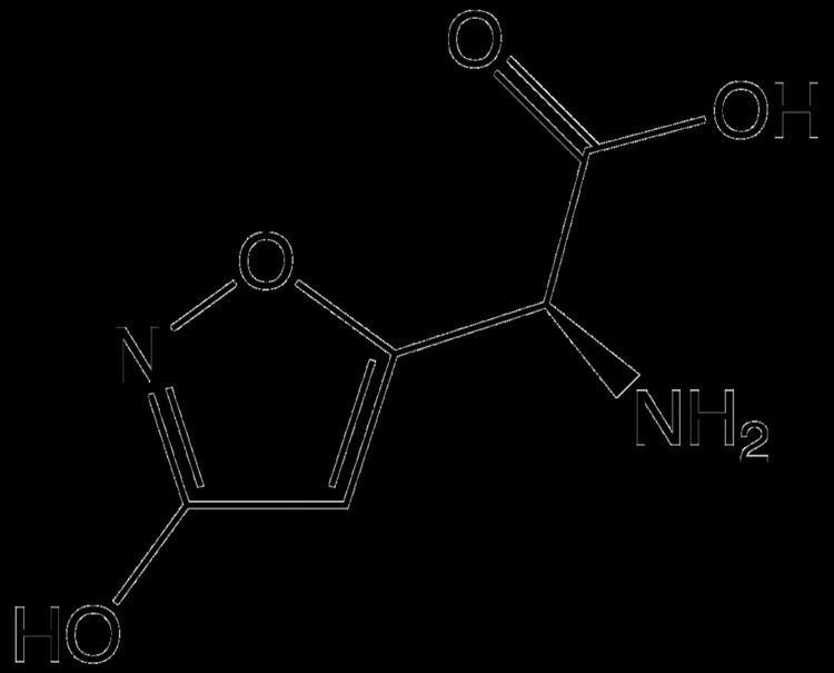 Ibotenic acid httpsuploadwikimediaorgwikipediacommonsthu