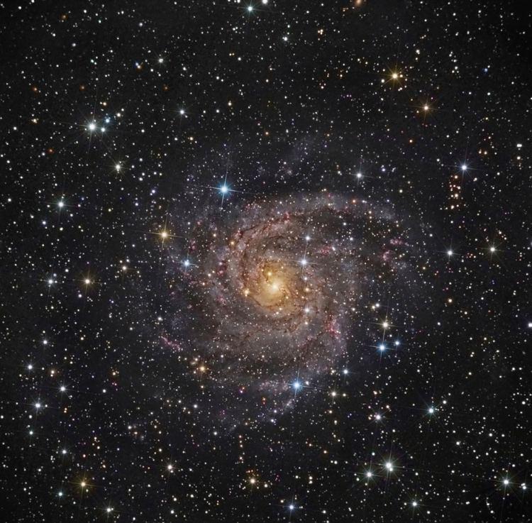 IC 342 Webb DeepSky Society Galaxy of the Month IC342