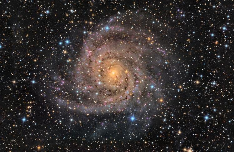 IC 342 APOD 2013 July 18 Hidden Galaxy IC 342