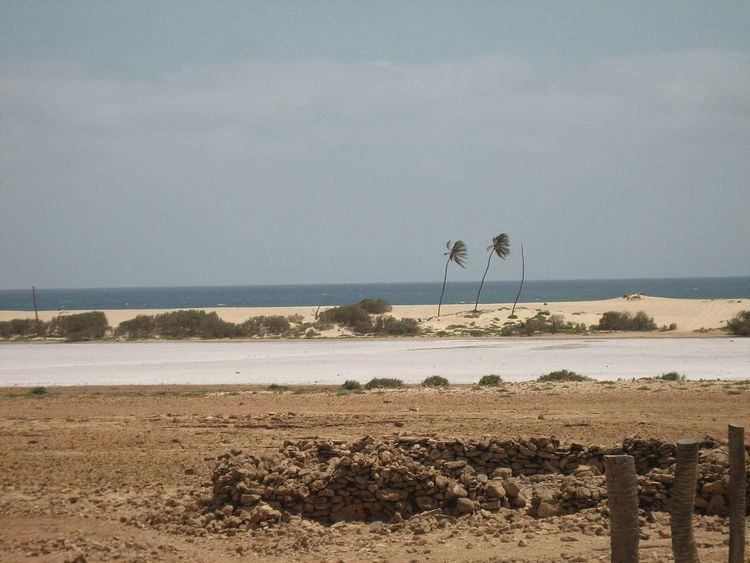 Ilhéu de Curral Velho and adjacent coast Important Bird Area