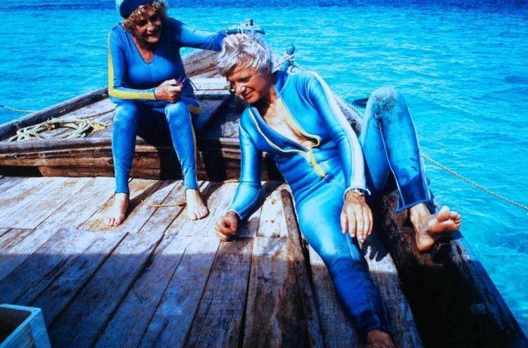 Impressionen unter Wasser Impressionen unter Wasser Bilder Cinemade
