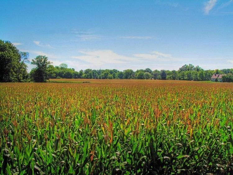 Indiana Beautiful Landscapes of Indiana
