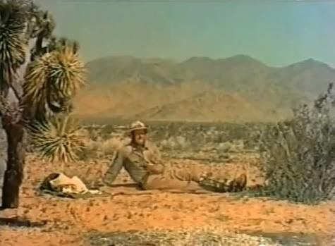 Inferno (1953 film) Junta Juleils Culture Shock Film Review INFERNO 1953 Roy Ward
