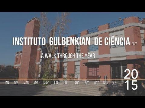 Instituto Gulbenkian de Ciência Instituto Gulbenkian de Cincia a walk through 2015 YouTube