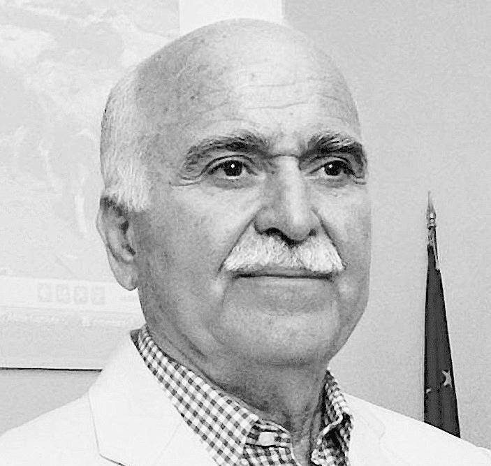Ioannis Pallikaris Prof Ioannis Pallikaris NanoVision