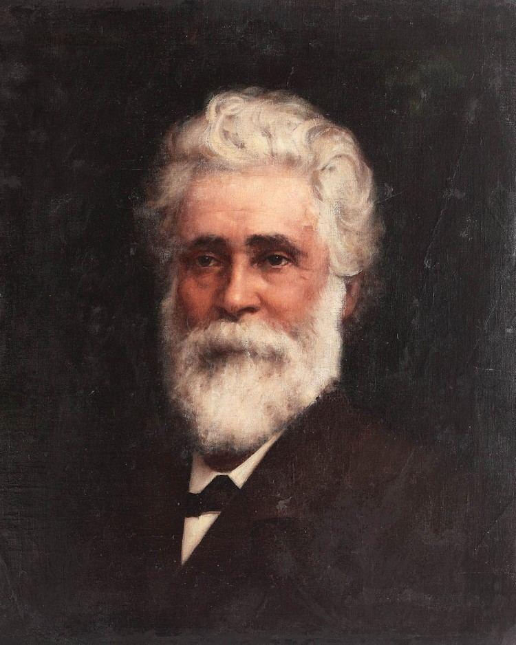 Ion C. Brătianu George Demetrescu Mirea Portretul lui Ion C Brtianu