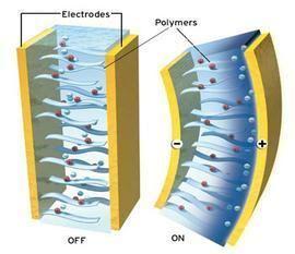 Ionic polymer–metal composites Smart Structures ionic polymer metal composites1