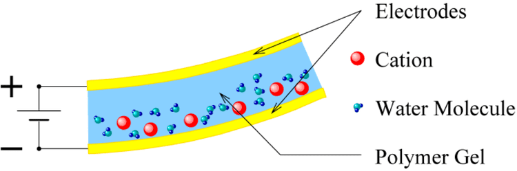 Ionic polymer–metal composites Micromachines Free FullText MultiInput MultiOutput Integrated