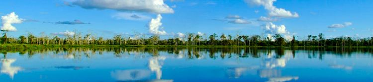 Iquitos Beautiful Landscapes of Iquitos