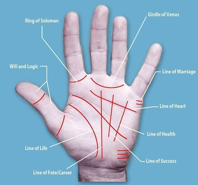 Is My Palm Read movie scenes Palmistry Diagram jpg