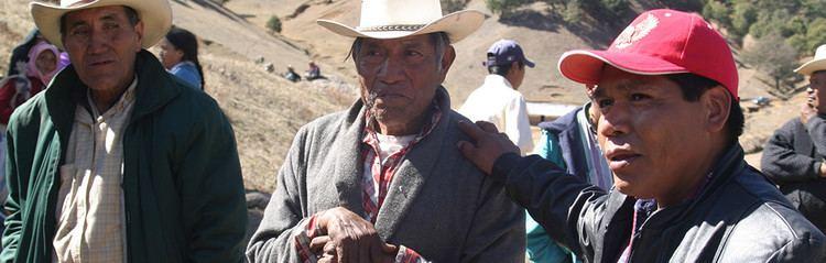 Isidro Baldenegro López Isidro Baldenegro Goldman Environmental Foundation Goldman
