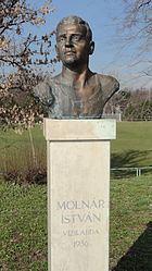 István Molnár httpsuploadwikimediaorgwikipediacommonsthu