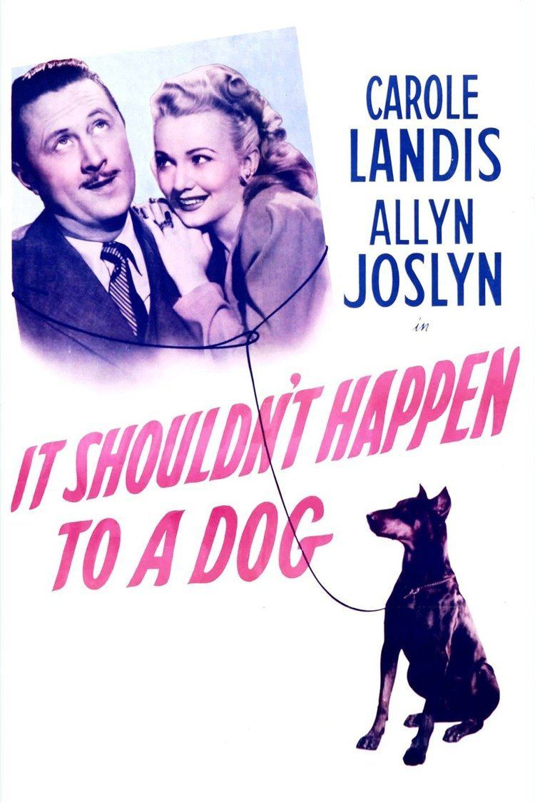 It Shouldn't Happen to a Dog wwwgstaticcomtvthumbmovieposters55429p55429