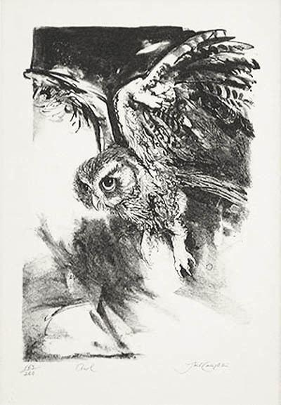 Jack Coughlin (artist) Jack Coughlin Owl in Flight