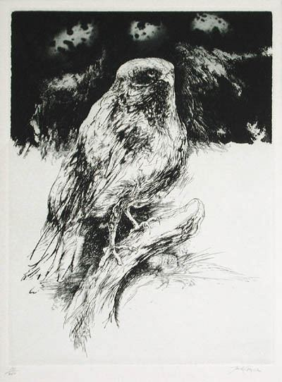 Jack Coughlin (artist) Coughlin Hawk