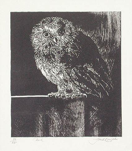 Jack Coughlin (artist) Coughlin Owl