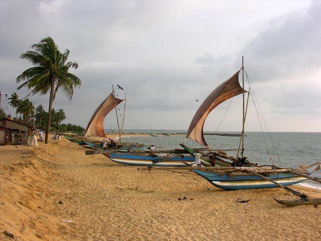 Jaffna Beautiful Landscapes of Jaffna