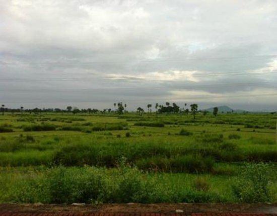 Jajpur Beautiful Landscapes of Jajpur