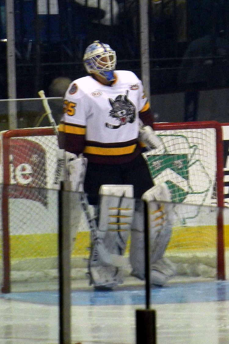 Jake Allen (ice hockey)