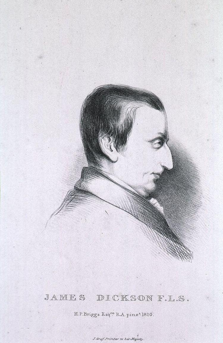 James Dickson (botanist)