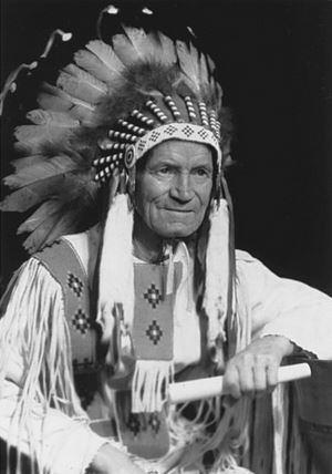 James Gladstone James Gladstone Canadas First Native Senator Fascinating