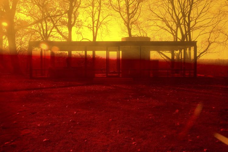 James Welling James Welling39s The Glass House NOWNESS