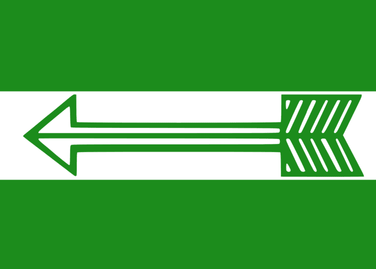Janata Dal (United) Flag.svg