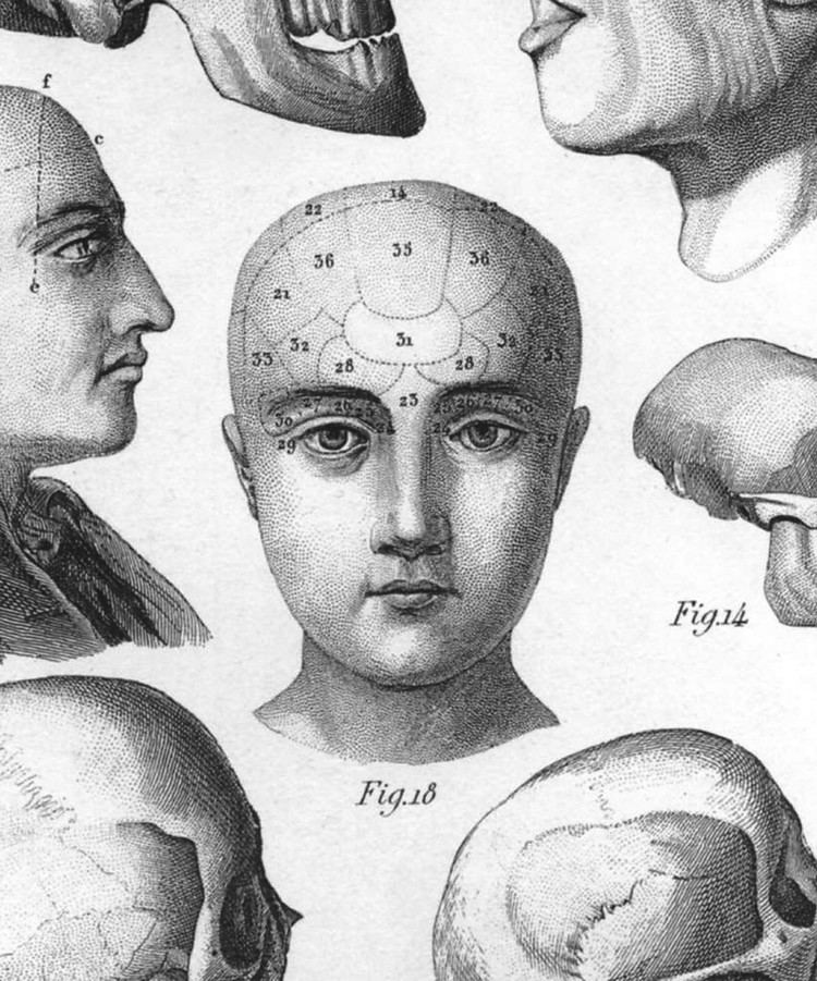 Janet Sternburg Review White Matter examines tragedy of lobotomies from a