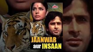 Shashi Kapoor Jaanwar Aur Insaan Scene 115 YouTube