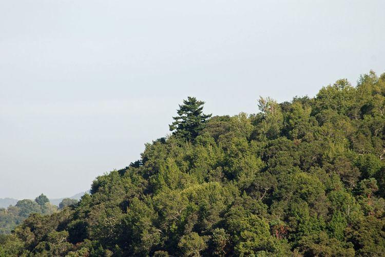 Jasper Ridge Biological Preserve - Alchetron, the free